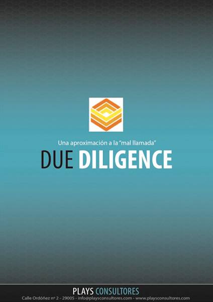 ebook - Due Diligence
